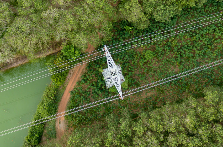 utility aerial vegetation management